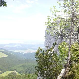 Steile Nordabbrüche der Gedererwand