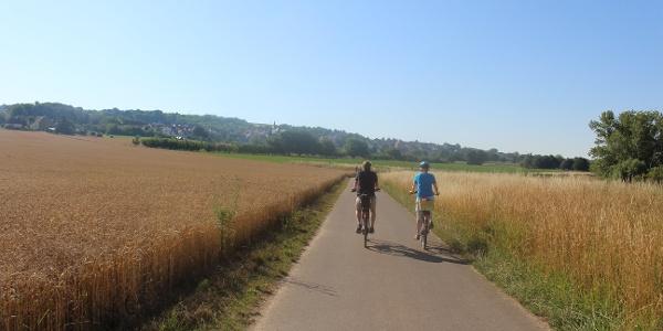 Fahrt auf dem Selztalradweg bei Gau-Odernheim