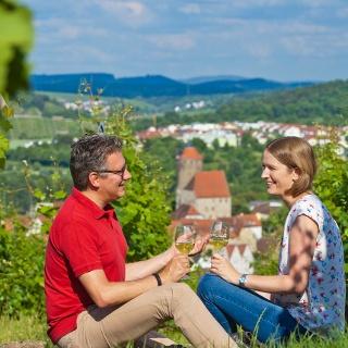 Genuss - Wandern - Blick auf Besigheim