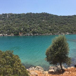 Blue seas for a swim