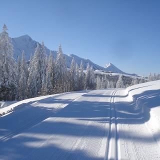 Langlaufloipe Salwideli mit herrlichem Panorama
