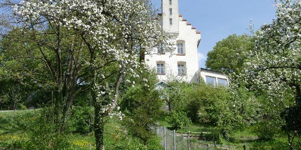 Veitsburg
