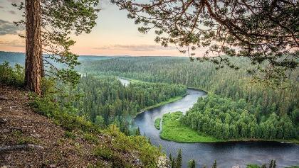 Kitkajoki rivière