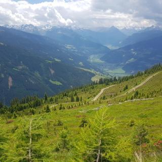 Blick vom Hamberg aufs Zillertal