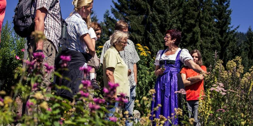 Mit Christine im Alpenkräutergarten