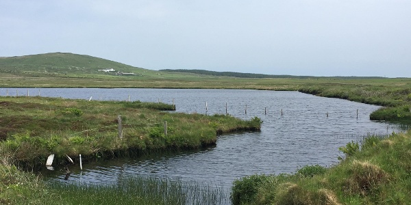 The loch on the Portnahaven loop
