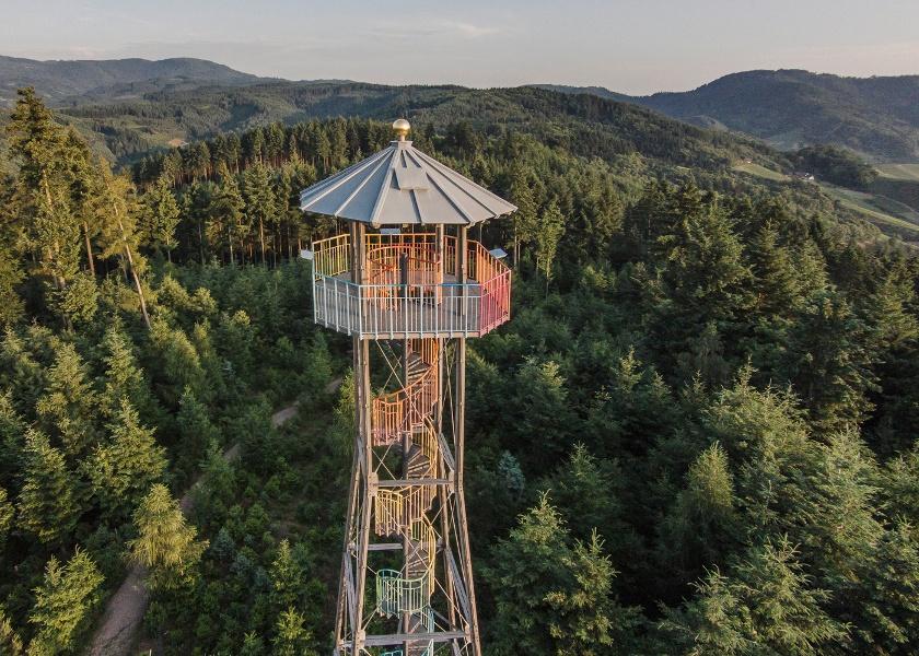 Über den Geigerskopf, St. Wendelin und Ortenauer Weinpfad
