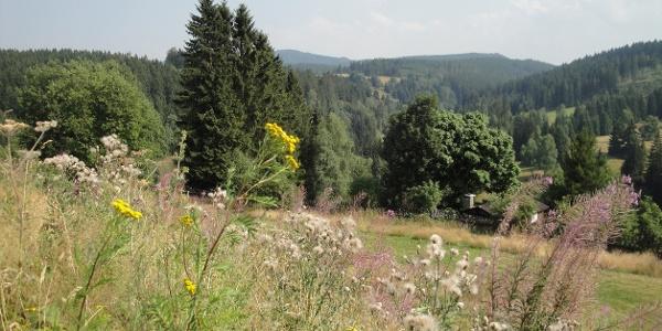 Johanngeorgenstadt - Blick ins Böhmische