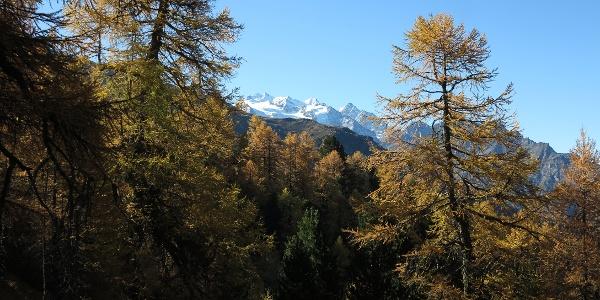 Sur le chemin d'altitude Visperterminen Gspon