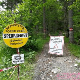 Gefahr durch Waldarbeit!