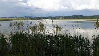 Zwischen den Seen