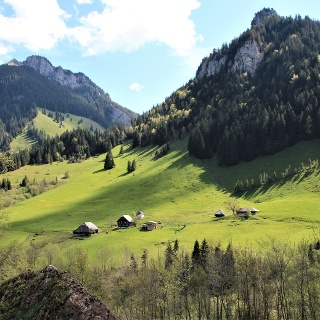 Brüedere Alp