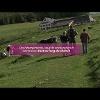 La traversée du Massif des Vosges, un itinéraire d'excellence