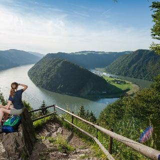 Donausteig - Schlögener Blick