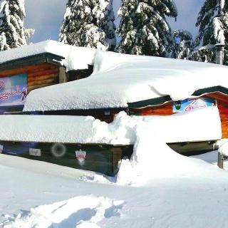 Zwergenhütte im Schigebiet Salzstiegl