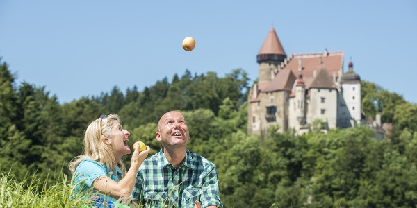 Donausteig: Burg Clam