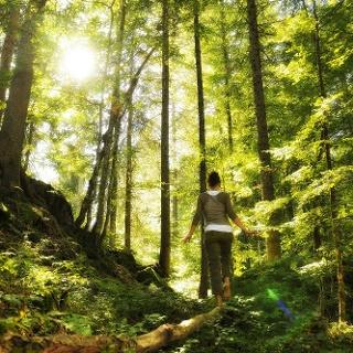 Walser Omgang - Finde deinen Weg