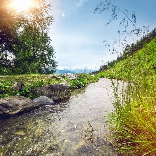 Tsittoret irrigation channel above Crans-Montana