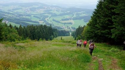 Prölleranstieg vor dem Gipfel mit Blick nach Kollnburg