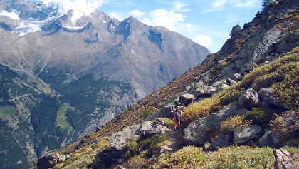Ibex trail above Saas-Fee