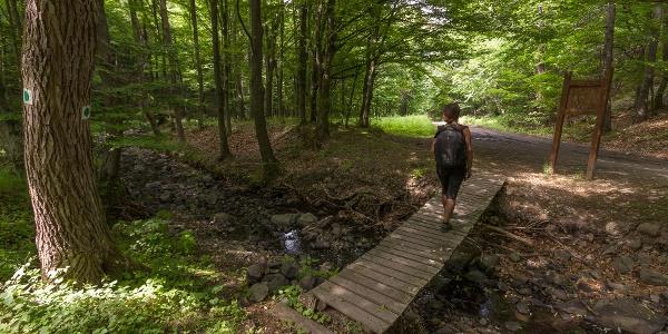 Híd a Kemence-patak fölött, a Gál-kútnál