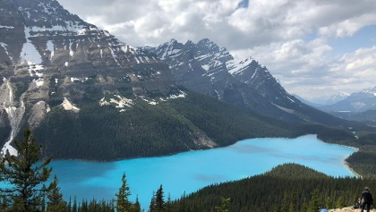 Peyto Lake Overlook - Bow Summit