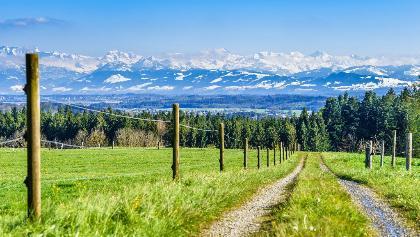 Blick auf die Alpen, Agasul
