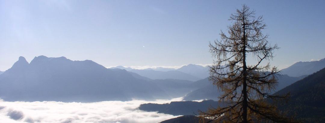 Nebel im Ennstal mit Gesäuse