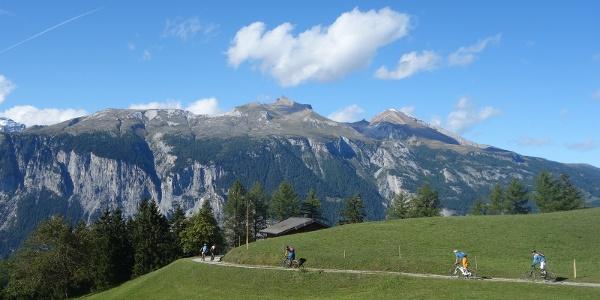 Alp Juchs mit Calanda im Hintergrund