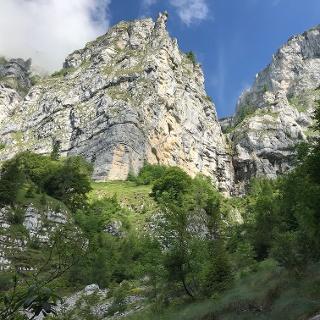 Si esce dal bosco, ecco le pareti meridionali delle Vette Feltrine