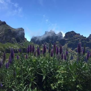 Vom Pico Ruivo auf dem bezaubernden Weg zum Encumeada Pass