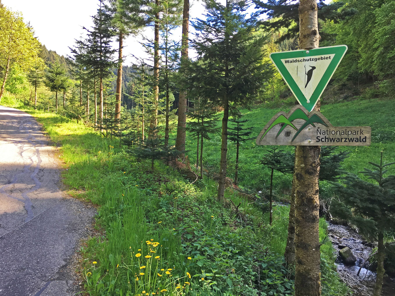 Eingang in den Nationalpark Schwarzwald bei der Auffahrt zum Kalikutt