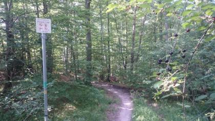 Ami-Trail