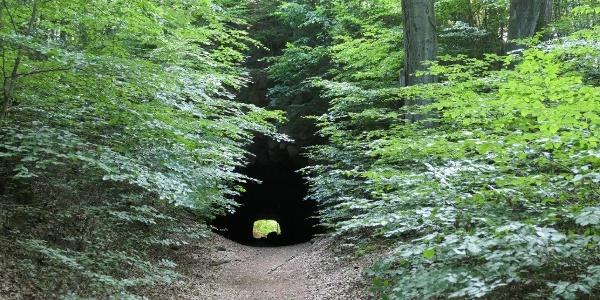 Tunnel Hohburg