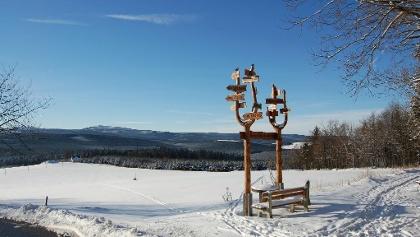 Bärenstein - Winterwandern im Erzgebirge