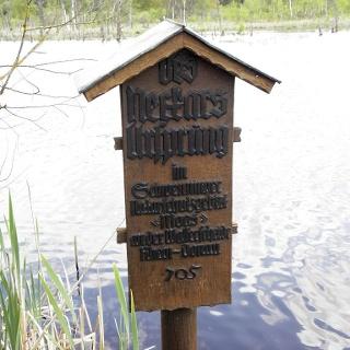Der Neckarursprung im Schwenninger Moos