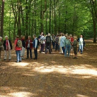 Wanderer im Naturschutzgebiet Bruchbach - Otterbachniederung