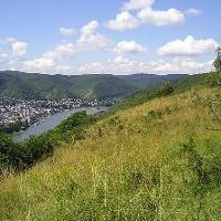 Rheinblick bei Filsen