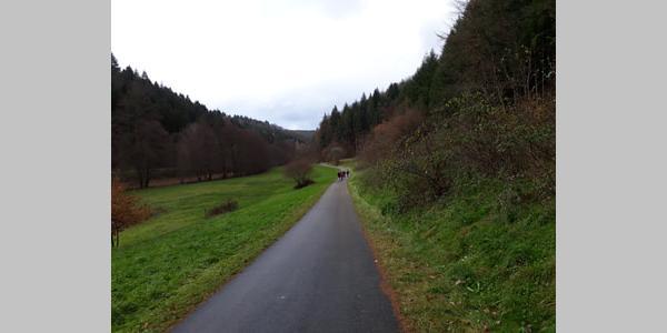 Radweg zwischen Erlenbach und Niederschlettenbach