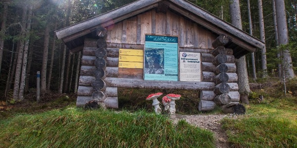 Starting point of Mushroom Trail at Gipfelbahn Hochwurzen cable-car