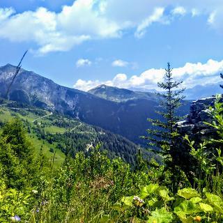 Stubaier Alpentour