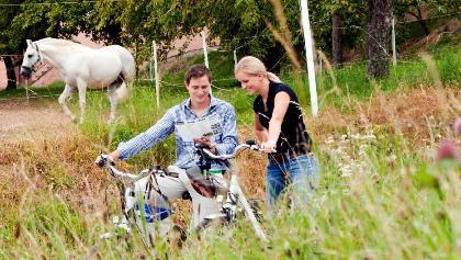 Radfahren im Lipizzanergesüt Piber