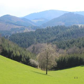 Blick auf das Ödsbachtal