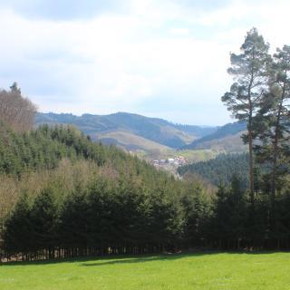 Blick vom Dummersbacher Eck auf das Ödsbachtal