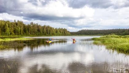 Kajakfahren in Jäkälämutka, entlang des Flusses Oulankajoki