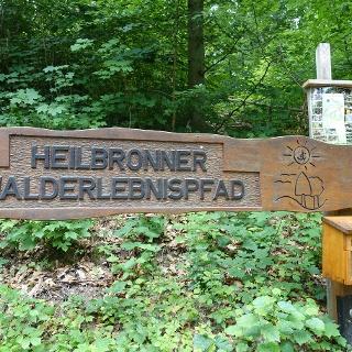 Walderlebnispfad Heilbronn