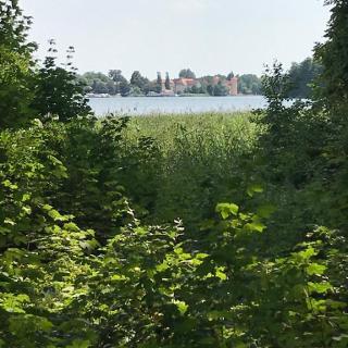 Blick auf Schloss Rheinsberg