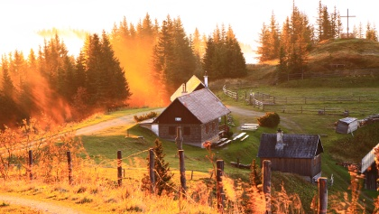 Kleinveitsch-Alm Hütte
