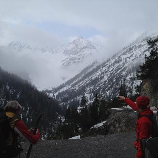 Blick vom Fahrweg zur Griesbachalpe hinauf zur Zwölferspitze