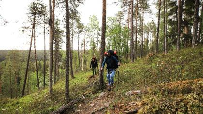 Hiker auf der Bärenrunde (Karhunkierros) im Nationalpark Oulanka